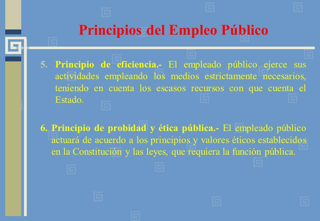 5.Principio de eficiencia.- El empleado público ejerce sus actividades empleando los medios estrictamente necesarios, teniendo en cuenta los escasos recursos con que cuenta el Estado.