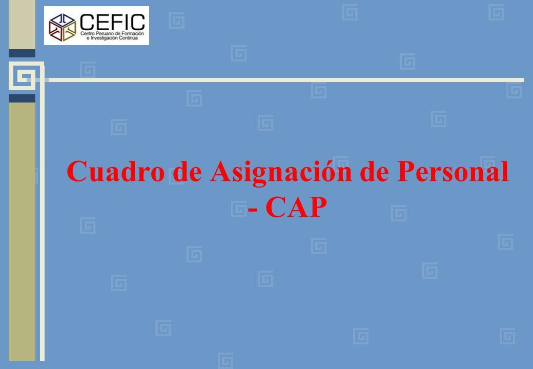 Cuadro de Asignación de Personal - CAP