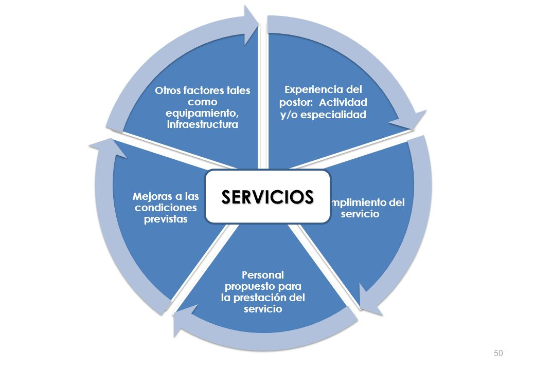 Experiencia del postor: Actividad y/o especialidad Cumplimiento del servicio Personal propuesto para la prestación del servicio Mejoras a las condicio