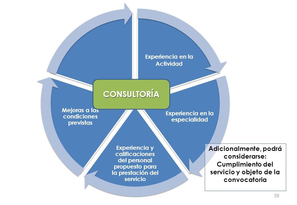 Experiencia en la Actividad Experiencia en la especialidad Experiencia y calificaciones del personal propuesto para la prestación del servicio Mejoras