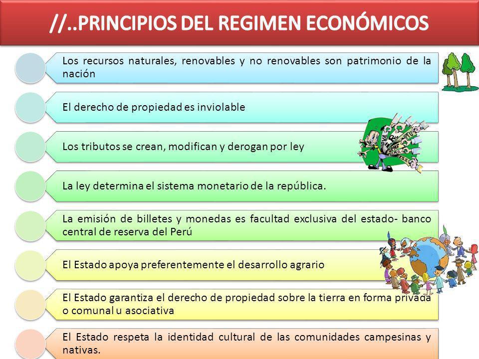 Los recursos naturales, renovables y no renovables son patrimonio de la nación El derecho de propiedad es inviolable Los tributos se crean, modifican y derogan por ley La ley determina el sistema monetario de la república.