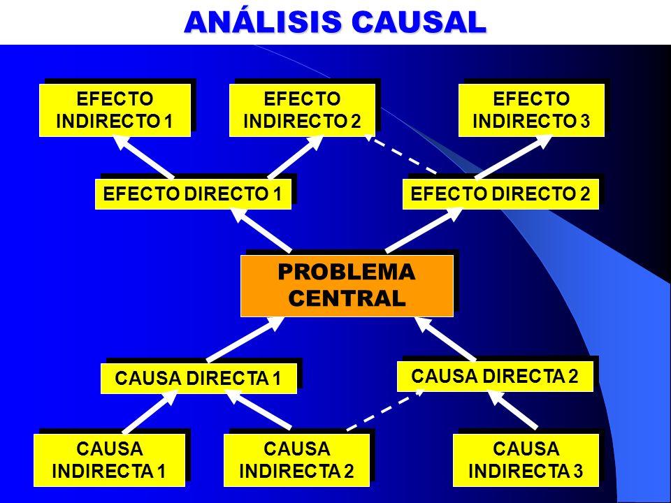 ANÁLISIS CAUSAL PROBLEMA CENTRAL CAUSA DIRECTA 1 CAUSA DIRECTA 2 CAUSA INDIRECTA 1 CAUSA INDIRECTA 2 CAUSA INDIRECTA 3 EFECTO DIRECTO 1 EFECTO DIRECTO