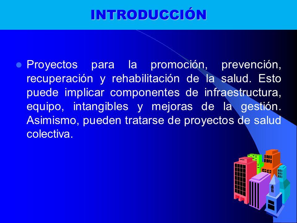 INTRODUCCIÓN Proyectos para la promoción, prevención, recuperación y rehabilitación de la salud. Esto puede implicar componentes de infraestructura, e