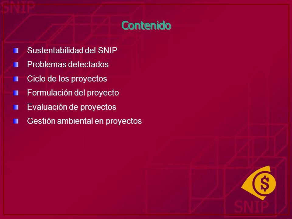 Contenido Sustentabilidad del SNIP Problemas detectados Ciclo de los proyectos Formulación del proyecto Evaluación de proyectos Gestión ambiental en p