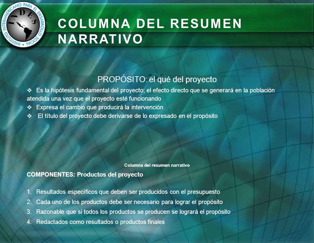 COLUMNA DEL RESUMEN NARRATIVO PROPÓSITO: el qué del proyecto Es la hipótesis fundamental del proyecto; el efecto directo que se generará en la poblaci