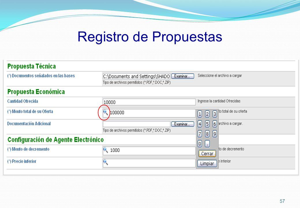 Registro de Propuestas 57