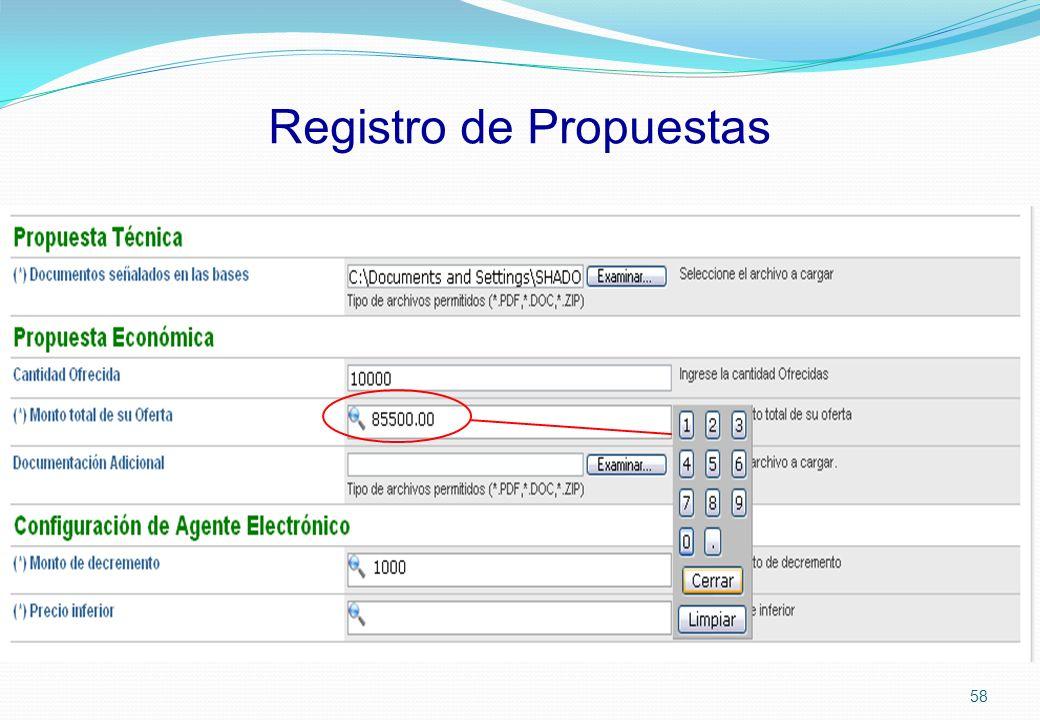 Registro de Propuestas 58