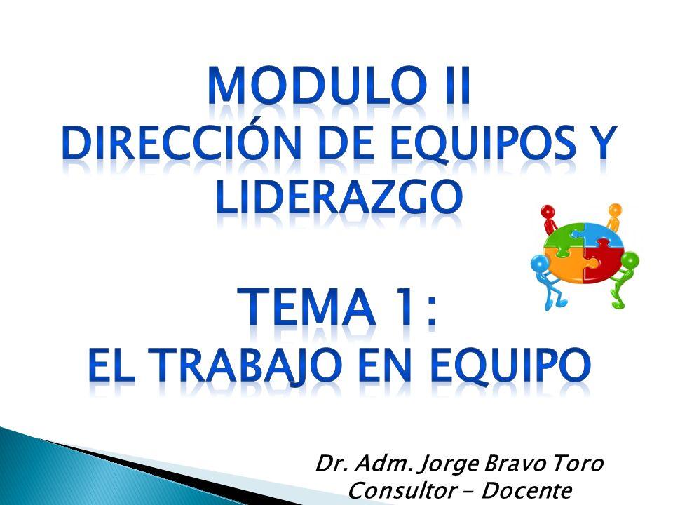 Dr. Adm. Jorge Bravo Toro Consultor - Docente