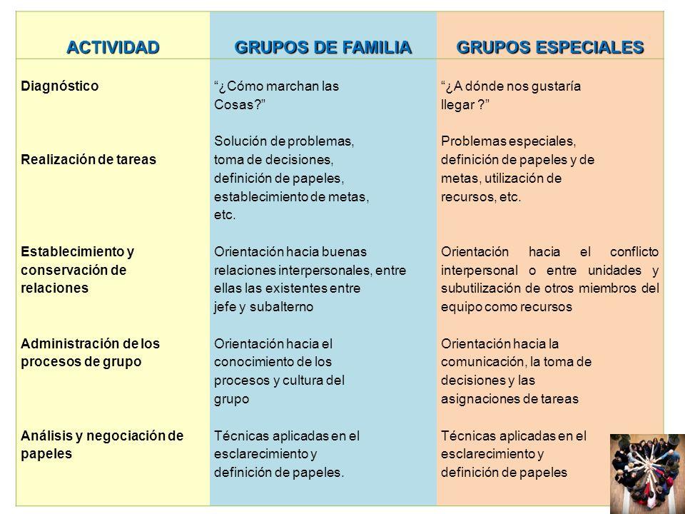 ACTIVIDAD GRUPOS DE FAMILIA GRUPOS ESPECIALES Diagnóstico Realización de tareas Establecimiento y conservación de relaciones Administración de los pro