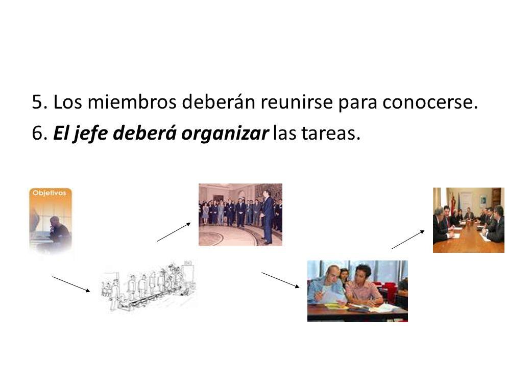 5. Los miembros deberán reunirse para conocerse. 6. El jefe deberá organizar las tareas.