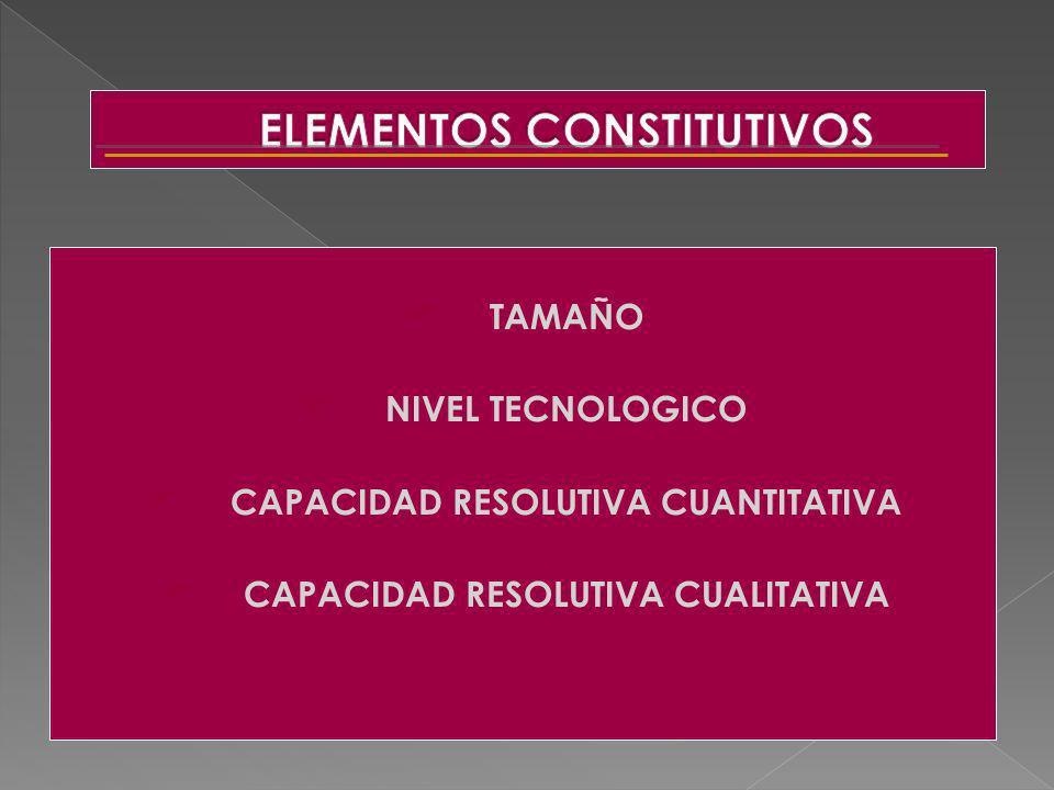 TAMAÑO NIVEL TECNOLOGICO CAPACIDAD RESOLUTIVA CUANTITATIVA CAPACIDAD RESOLUTIVA CUALITATIVA