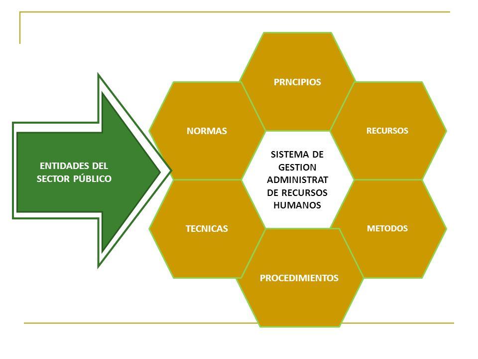 Sistema de asignación de puntos: Análisis ocupacional: Trabajo de campo o recopilación de datos de fuentes primarias.