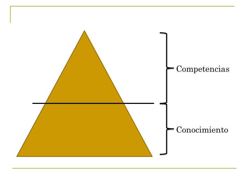 Competencias Conocimiento