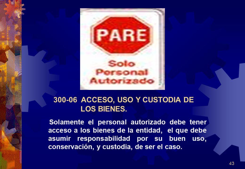 43 300-06 ACCESO, USO Y CUSTODIA DE LOS BIENES. Solamente el personal autorizado debe tener acceso a los bienes de la entidad, el que debe asumir resp