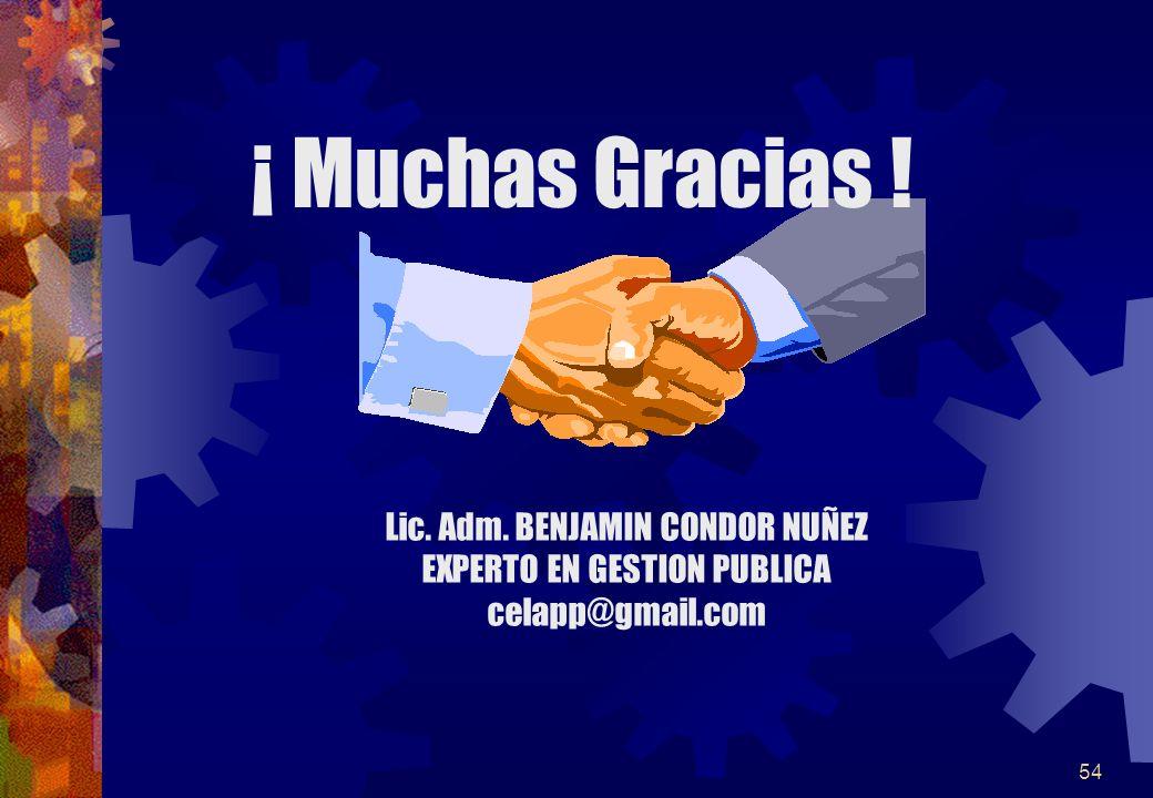 54 ¡ Muchas Gracias ! Lic. Adm. BENJAMIN CONDOR NUÑEZ EXPERTO EN GESTION PUBLICA celapp@gmail.com