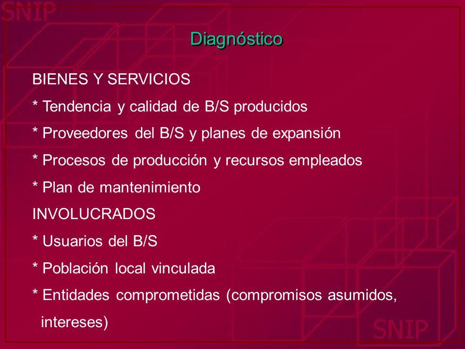 Diagnóstico BIENES Y SERVICIOS * Tendencia y calidad de B/S producidos * Proveedores del B/S y planes de expansión * Procesos de producción y recursos