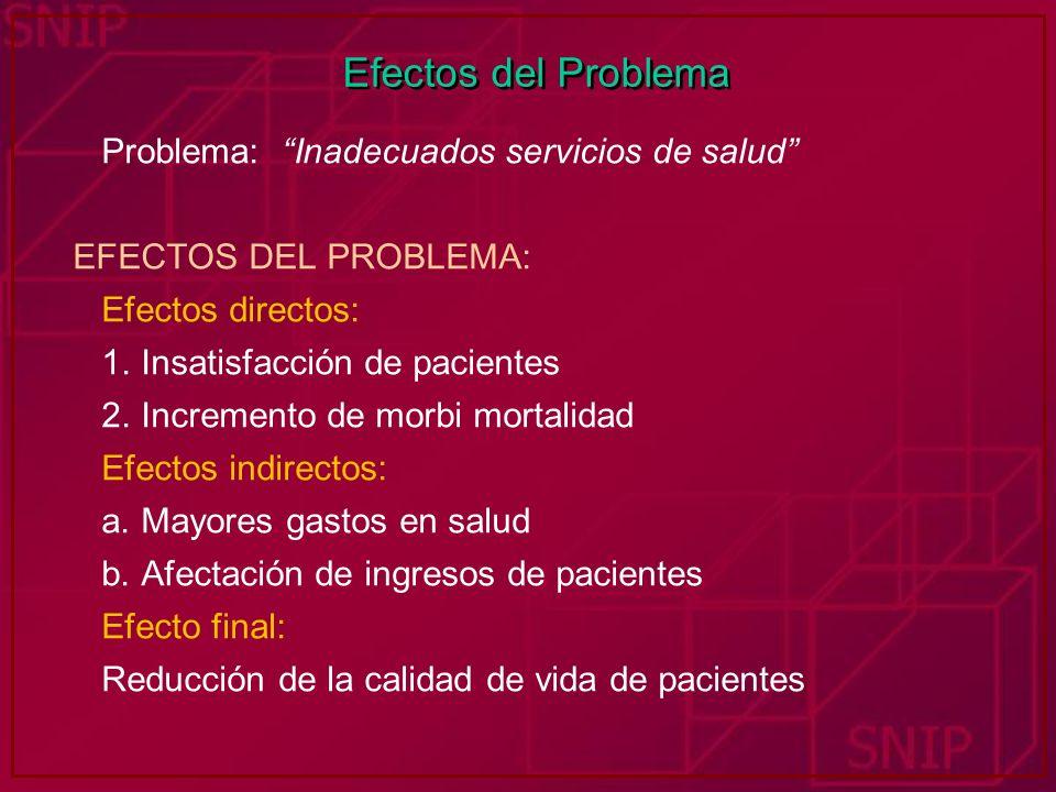 Efectos del Problema Problema: Inadecuados servicios de salud EFECTOS DEL PROBLEMA: Efectos directos: 1. Insatisfacción de pacientes 2. Incremento de