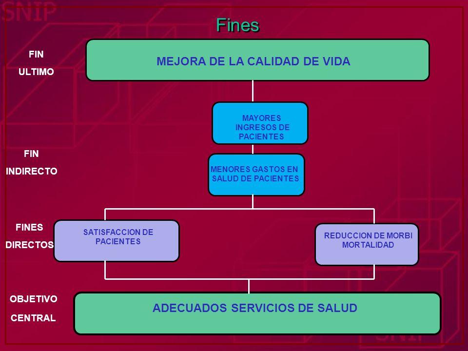 Fines MEJORA DE LA CALIDAD DE VIDA FIN ULTIMO ADECUADOS SERVICIOS DE SALUD SATISFACCION DE PACIENTES REDUCCION DE MORBI MORTALIDAD MENORES GASTOS EN S