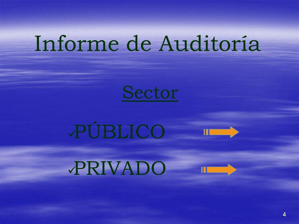 4 Informe de Auditoría PÚBLICO Sector PRIVADO