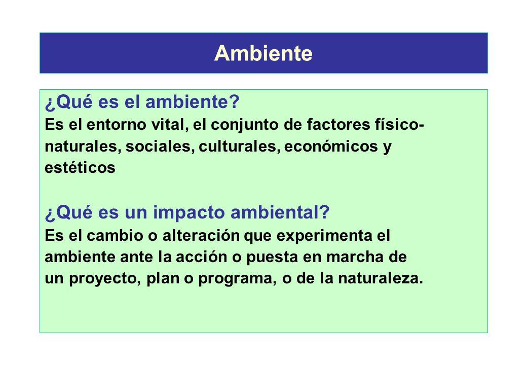 Características del Proyecto Características del medio ambiente Identificación de impactos Evaluación Mitigación Valoración, Vigilancia y Control ambi