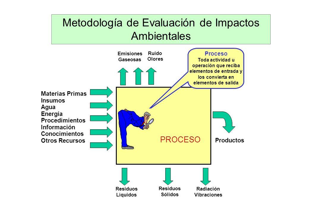 Contenido del EIA PASO 1: Descripción del PIP PASO 2: Descripción del ambiente PASO 3: Identificación y análisis de impactos PASO 4: Identificación y