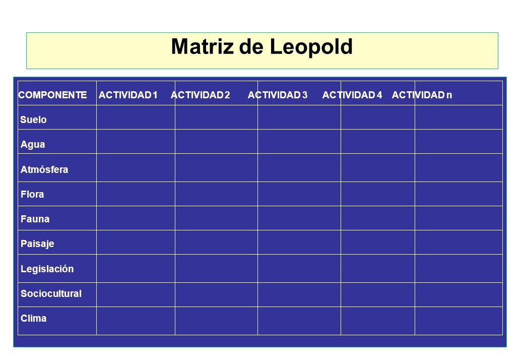 Matrices PasosDescripción 1 Listado de actividades del proyecto según fases (columnas) 2 Listado de los componentes del ambiente (filas) 3 Definición