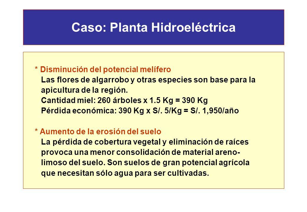 Caso: Planta Hidroeléctrica * Pérdida de frutos de algarrobo Árboles afectados: 75 x 0.7 = 52 árboles /Ha = 260 árboles Cantidad algarrobo: 260 árbole