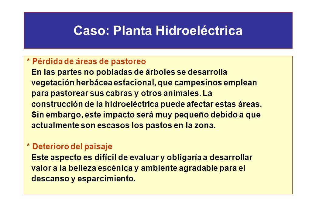 Caso: Planta Hidroeléctrica * Disminución del potencial melífero Las flores de algarrobo y otras especies son base para la apicultura de la región. Ca