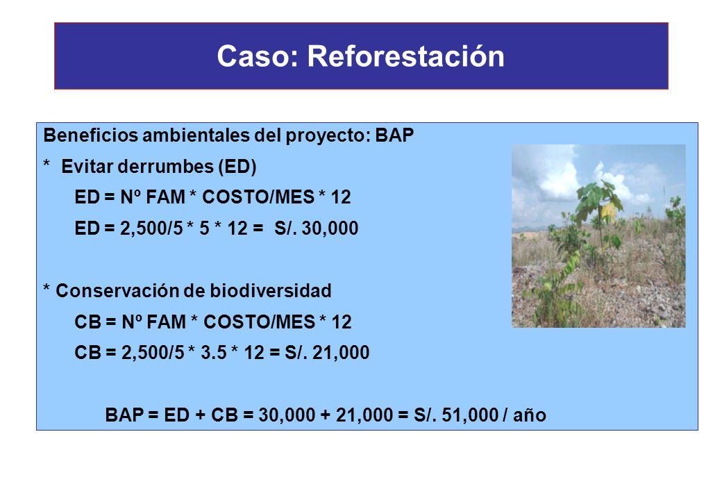 Caso: Reforestación Beneficios ambientales del proyecto: * Evitar derrumbes * Conservación de biodiversidad Población beneficiada: 2,500 habitantes De