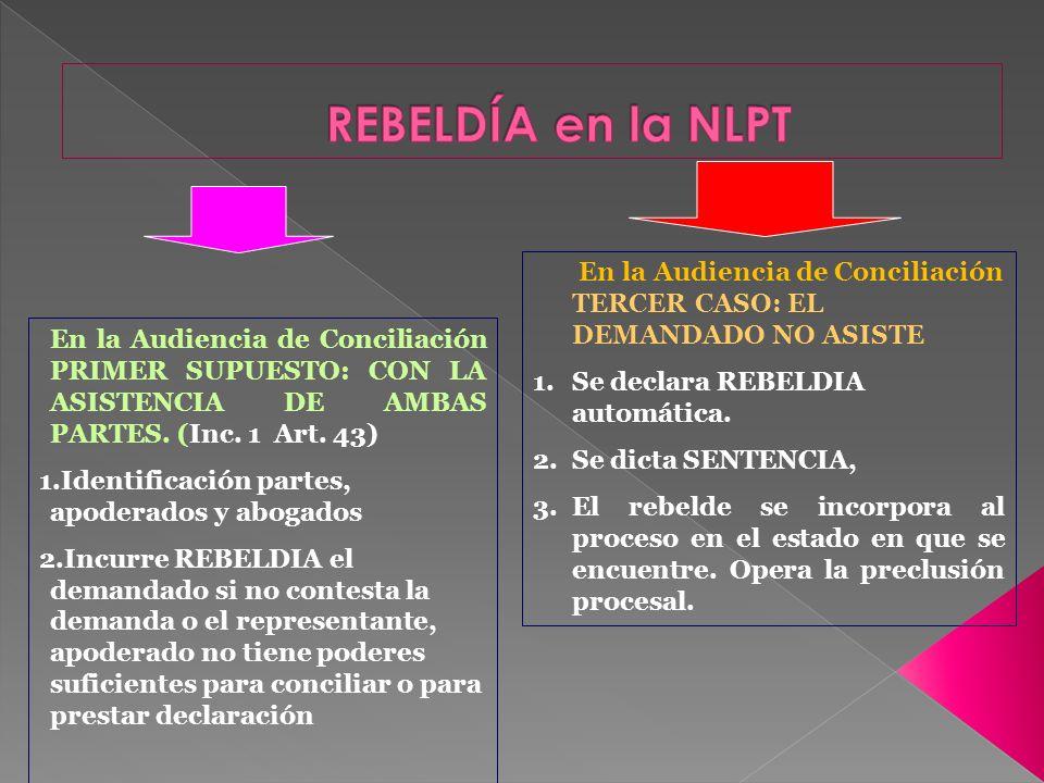 En la Audiencia de Conciliación PRIMER SUPUESTO: CON LA ASISTENCIA DE AMBAS PARTES. (Inc. 1 Art. 43) 1.Identificación partes, apoderados y abogados 2.