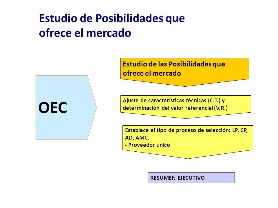 OEC Estudio de las Posibilidades que ofrece el mercado Ajuste de características técnicas (C.T.) y determinación del valor referencial (V.R.) RESUMEN