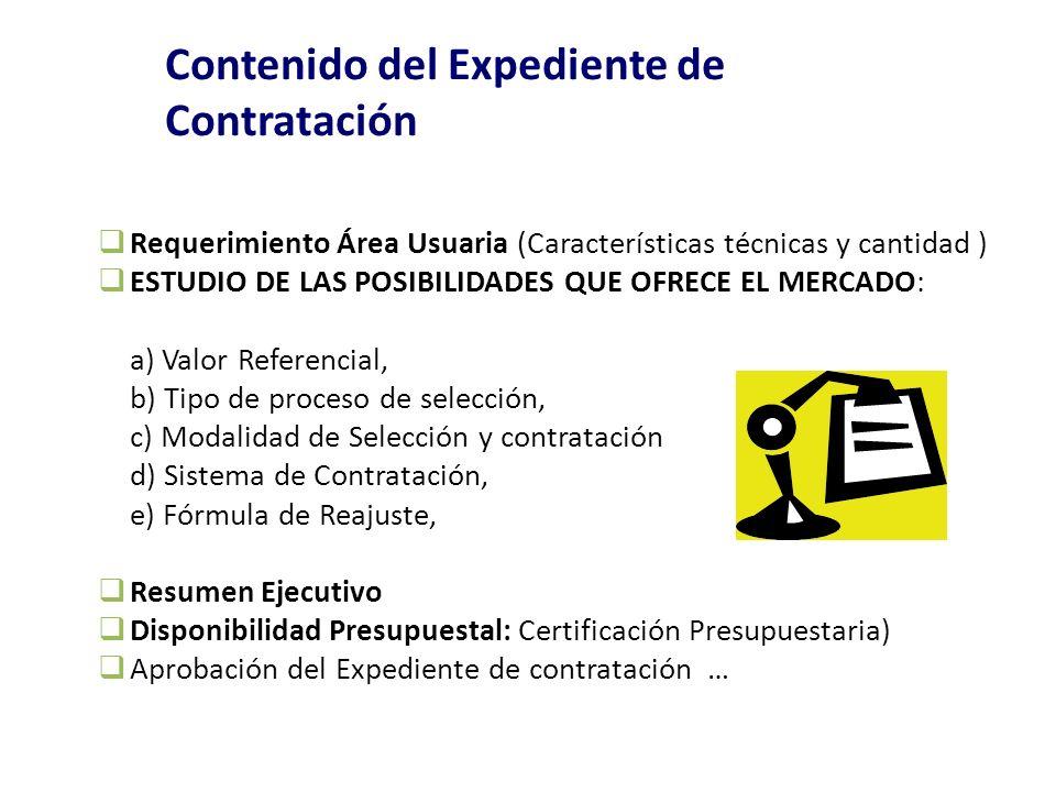 Contenido del Expediente de Contratación Requerimiento Área Usuaria (Características técnicas y cantidad ) ESTUDIO DE LAS POSIBILIDADES QUE OFRECE EL