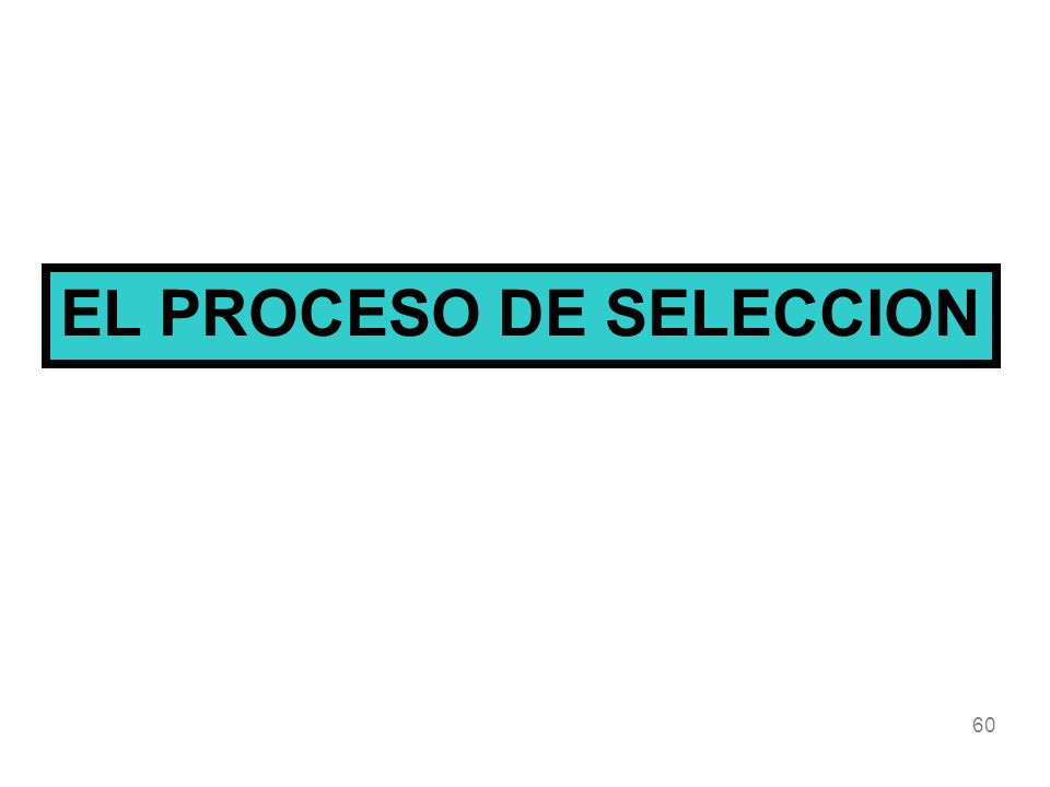 60 EL PROCESO DE SELECCION