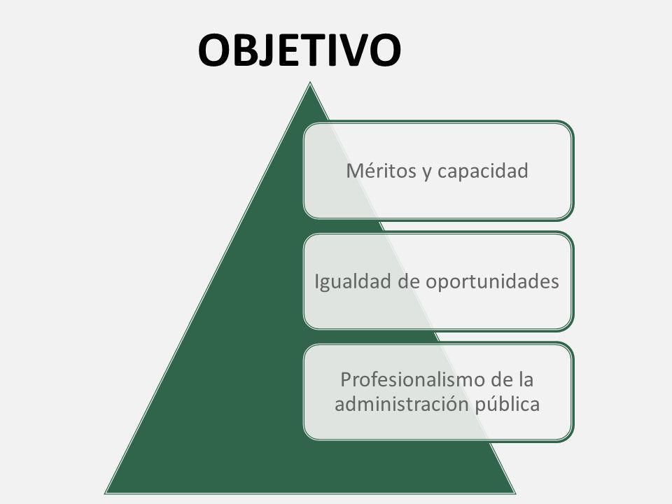 DEFINICION Constituye una modalidad especial propia del derecho administrativo y privativa del estado que vincula a una entidad pública con una persona natural de manera no autónoma.