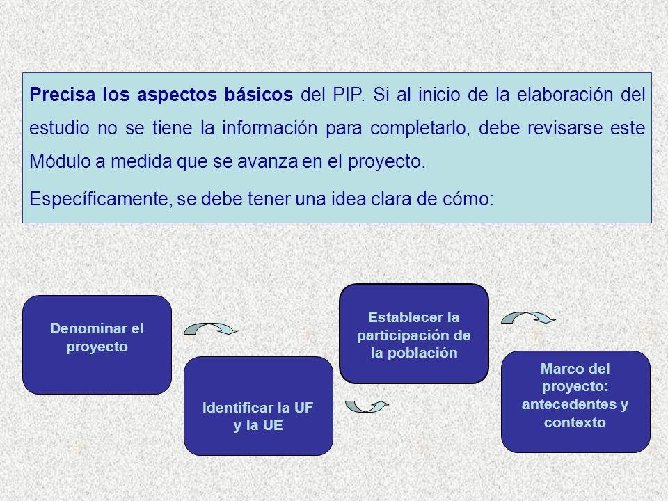 Precisa los aspectos básicos del PIP. Si al inicio de la elaboración del estudio no se tiene la información para completarlo, debe revisarse este Módu