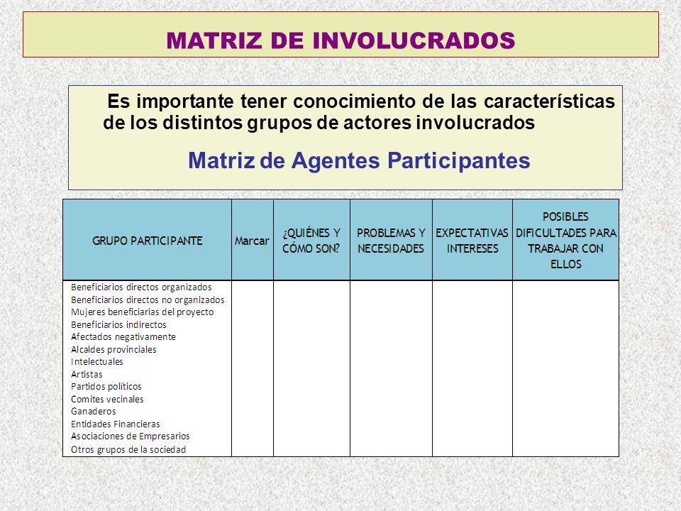 MATRIZ DE INVOLUCRADOS Es importante tener conocimiento de las características de los distintos grupos de actores involucrados Matriz de Agentes Parti