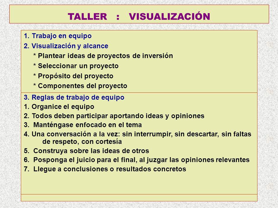 TALLER : VISUALIZACIÓN 1. Trabajo en equipo 2. Visualización y alcance * Plantear ideas de proyectos de inversión * Seleccionar un proyecto * Propósit