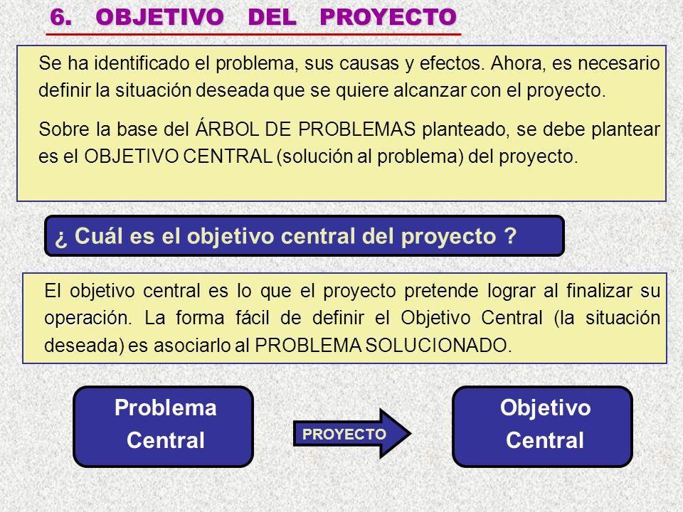 6.OBJETIVO DEL PROYECTO Se ha identificado el problema, sus causas y efectos.