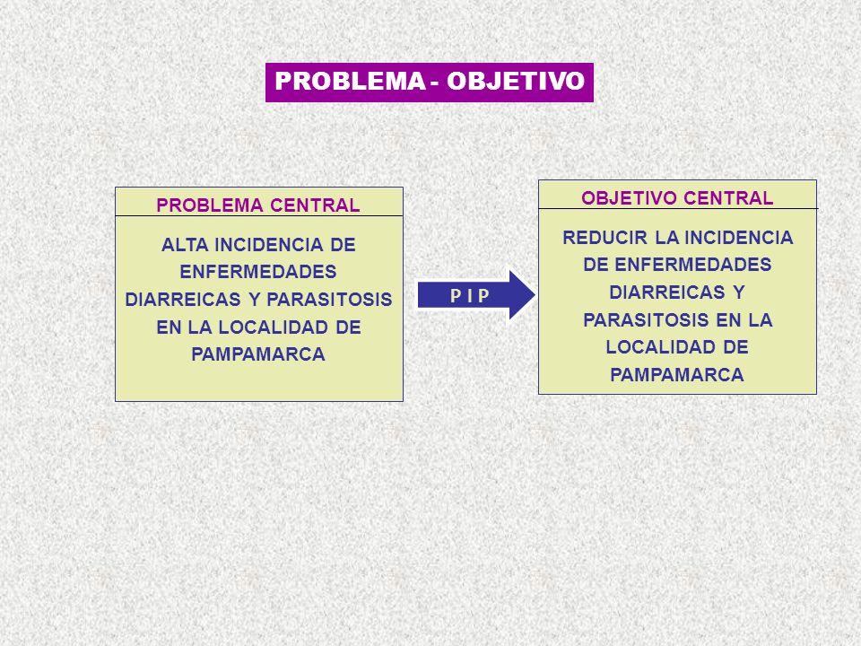 P I P PROBLEMA CENTRAL ALTA INCIDENCIA DE ENFERMEDADES DIARREICAS Y PARASITOSIS EN LA LOCALIDAD DE PAMPAMARCA OBJETIVO CENTRAL REDUCIR LA INCIDENCIA DE ENFERMEDADES DIARREICAS Y PARASITOSIS EN LA LOCALIDAD DE PAMPAMARCA PROBLEMA - OBJETIVO