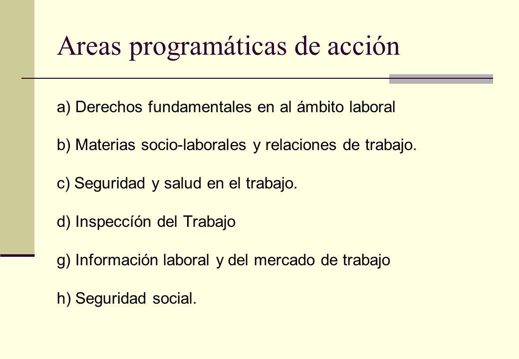 Areas programáticas de acción a) Derechos fundamentales en al ámbito laboral b) Materias socio-laborales y relaciones de trabajo. c) Seguridad y salud