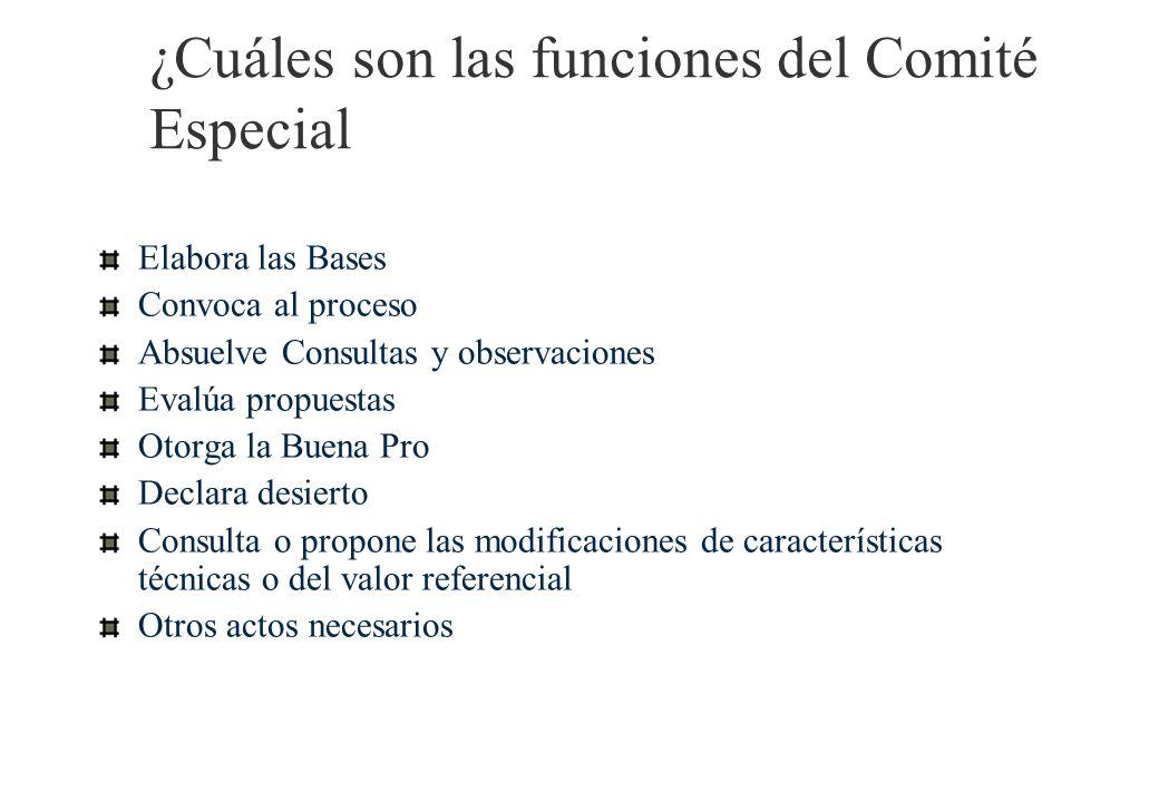 El Comité Especial Se designa por escrito, a través del funcionario competente. Comité Especial (ad hoc) Comité Especial Permanente Tres miembros: uno