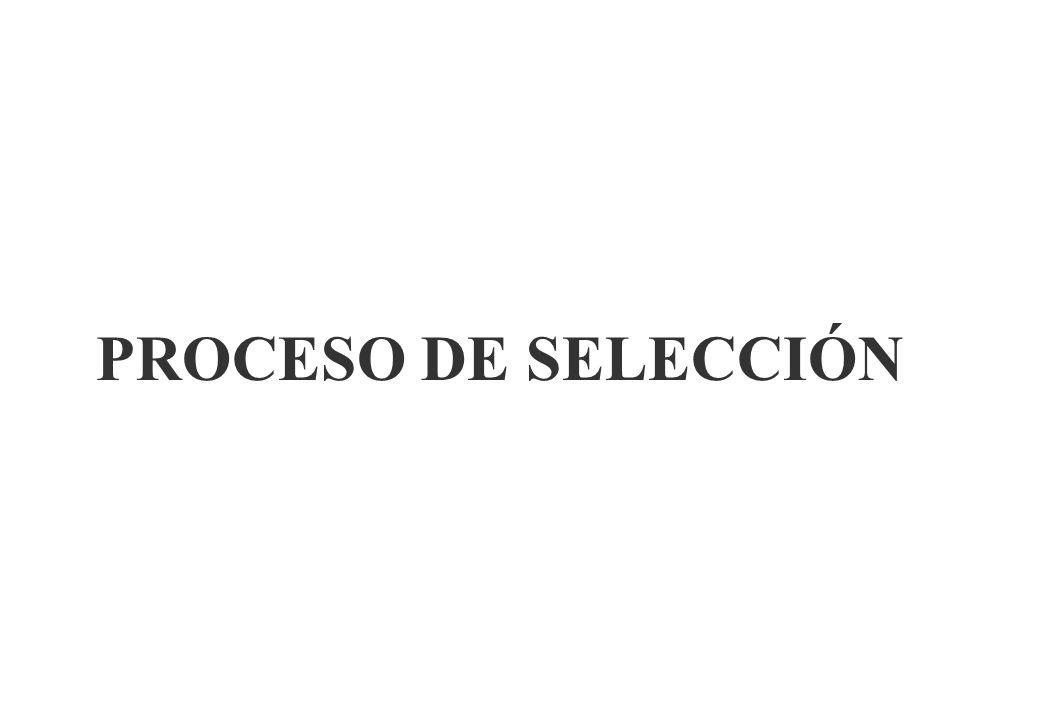 LAS BASES Contenido de las propuestas Art. 42º Rgto. -Copia certificado RNP -DDJJ ART. 76º Rgto -Doc. Obligatoria. -Documentación facultativa -Oferta