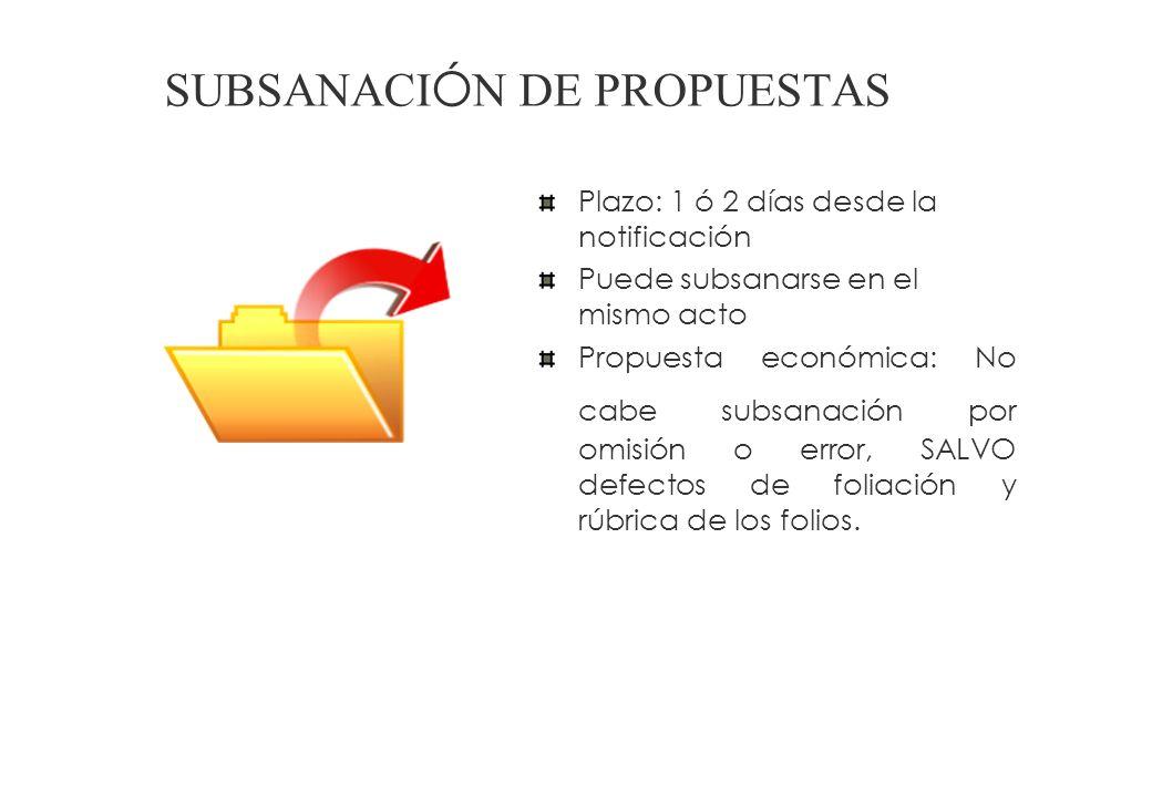 Todos los documentos referidos a RTM y factores de evaluación se presentan en castellano o acompañados de traducción (traductor público juramentado).