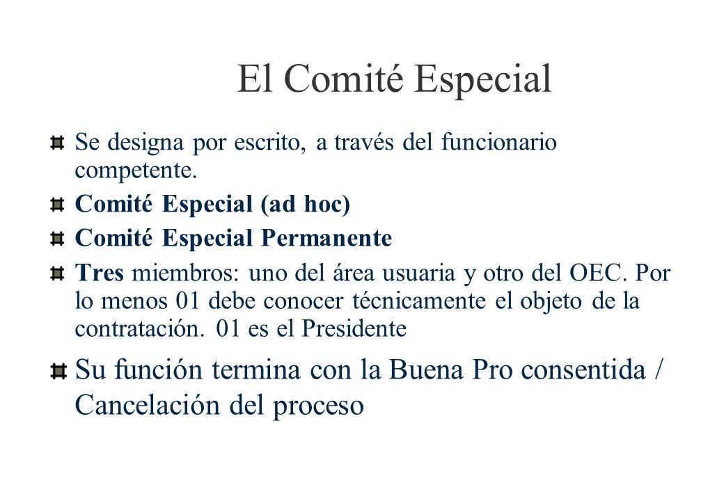 El Comité Especial Se designa por escrito, a través del funcionario competente.