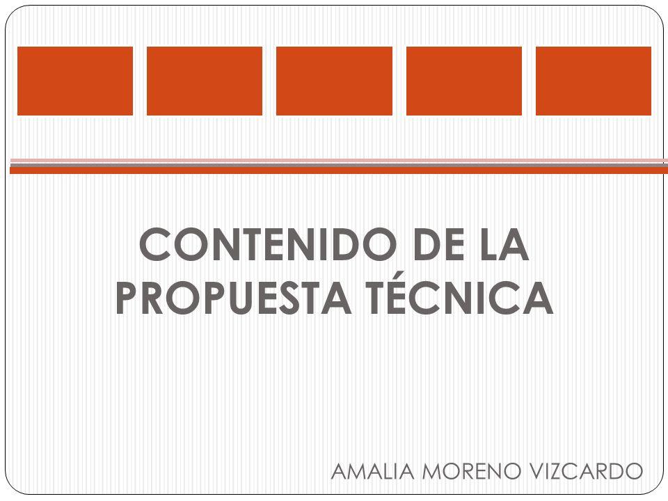 CONTENIDO DE LA PROPUESTA TÉCNICA AMALIA MORENO VIZCARDO