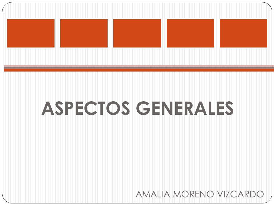 ASPECTOS GENERALES AMALIA MORENO VIZCARDO