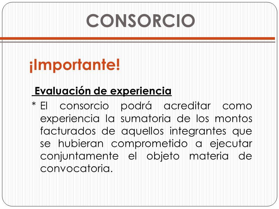 CONSORCIO Evaluación de experiencia *El consorcio podrá acreditar como experiencia la sumatoria de los montos facturados de aquellos integrantes que s