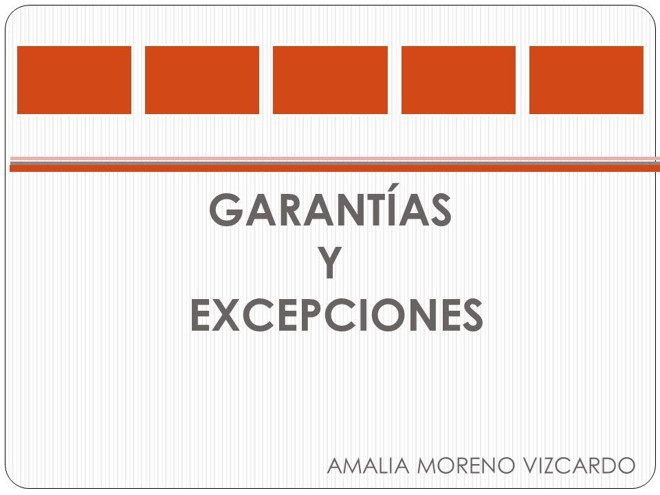 GARANTÍAS Y EXCEPCIONES AMALIA MORENO VIZCARDO
