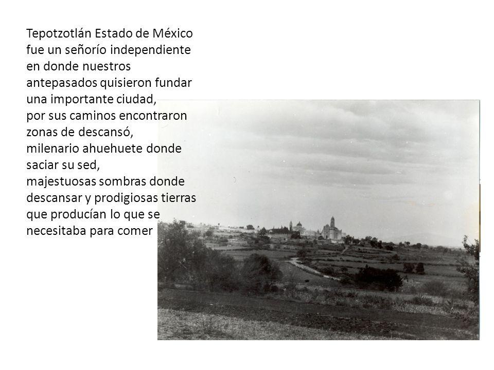 Tepotzotlán Estado de México fue un señorío independiente en donde nuestros antepasados quisieron fundar una importante ciudad, por sus caminos encontraron zonas de descansó, milenario ahuehuete donde saciar su sed, majestuosas sombras donde descansar y prodigiosas tierras que producían lo que se necesitaba para comer