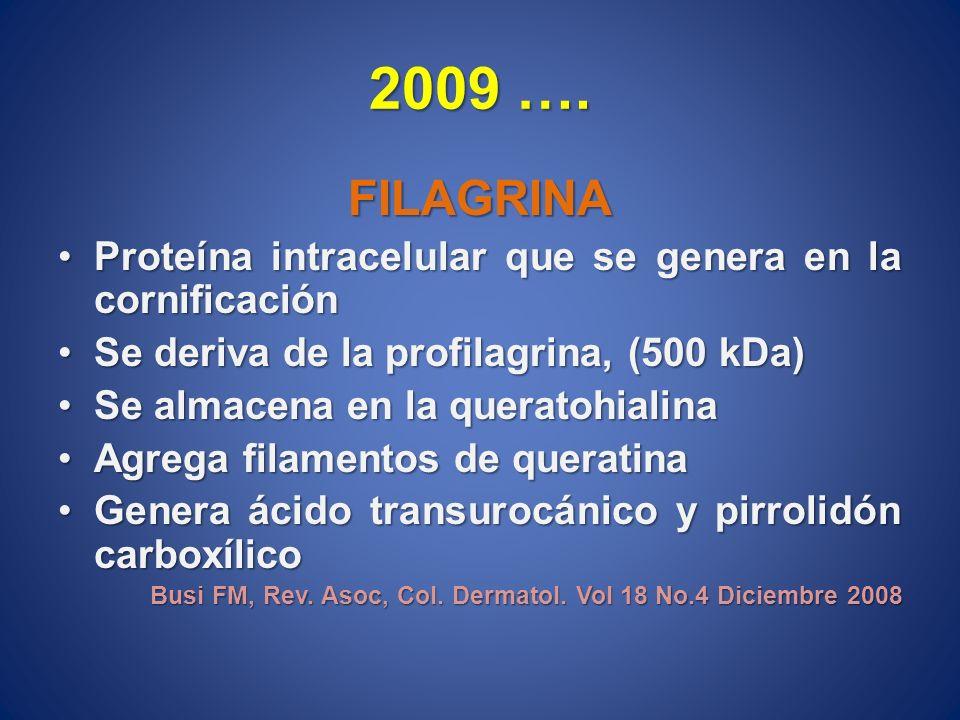 2009 …. FILAGRINA Proteína intracelular que se genera en la cornificaciónProteína intracelular que se genera en la cornificación Se deriva de la profi